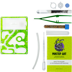 """Комплект муравьиной фермы Smart """"Зеленый лист"""""""